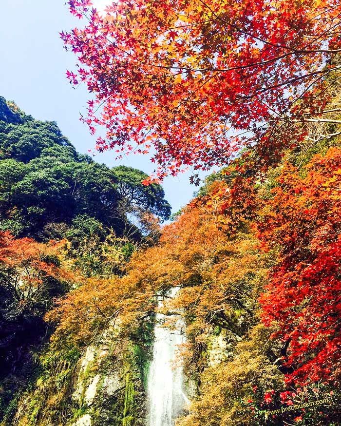 Minoh Waterfall, Japan, Autumn